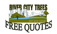 FREE QUOTES Brisbane Tree Cutting , Felling & Removal _small