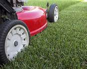 LANDSCAPING, LAWN MOWING, GARDENING, RUBBISH REMOVAL